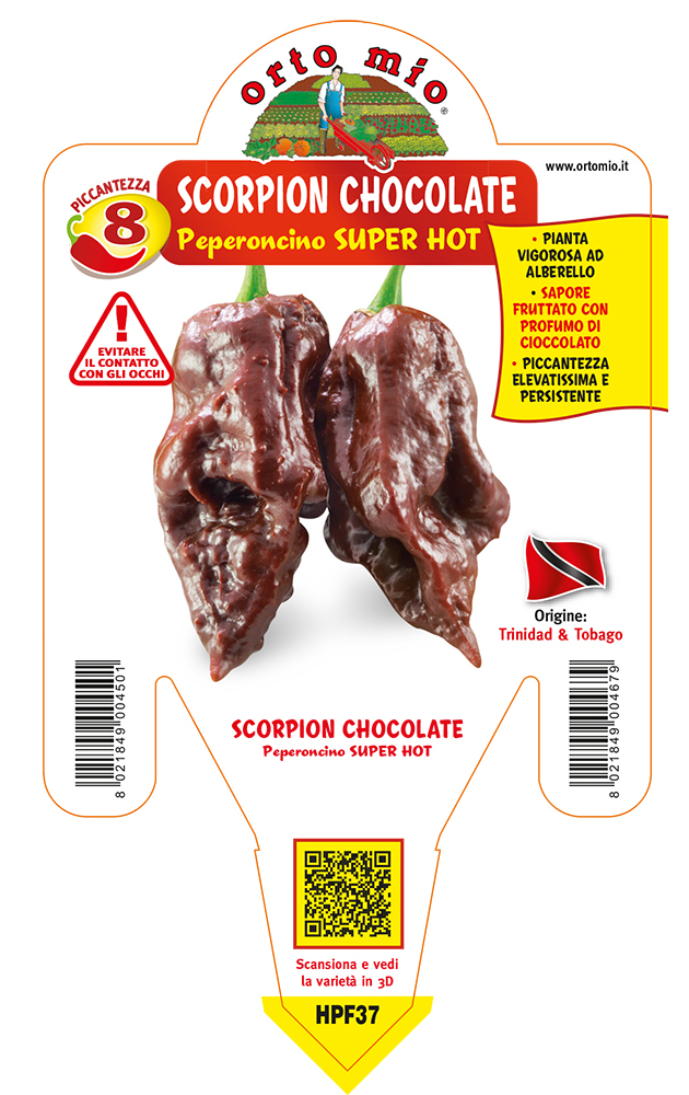 Peperoncino piccante SUPER HOT Trinidad Scorpion Chocolate