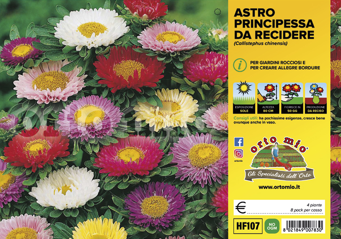 Fiori da recidere Astro
