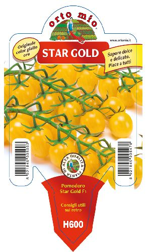 Giallo  Gold Star F1