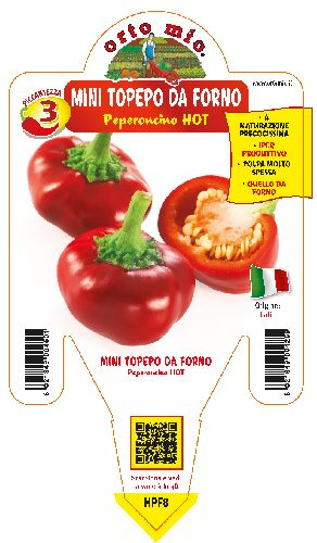 HOT Topepo da forno (o mini Topepo)