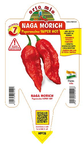 SUPER HOT Naga Morich